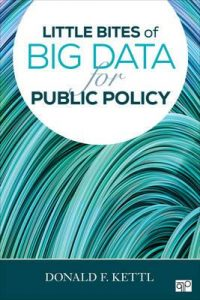 little-bites-of-big-data-for-public-policy